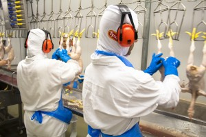 Tyson Foods Inc V Bouaphakeo Questions Statistical